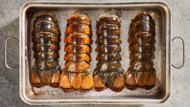 Freezing and Thawing Tails and Claws   Maine Lobster Marketing Collaborative