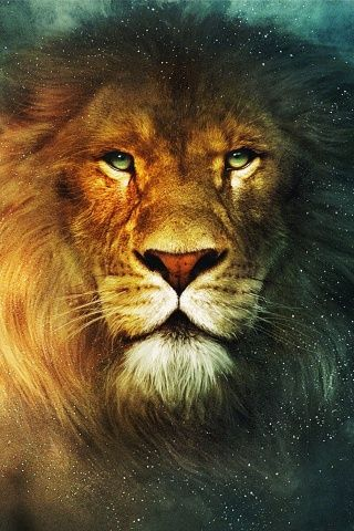~J   Don't make the KING....mad  !!!!!!    Aslan