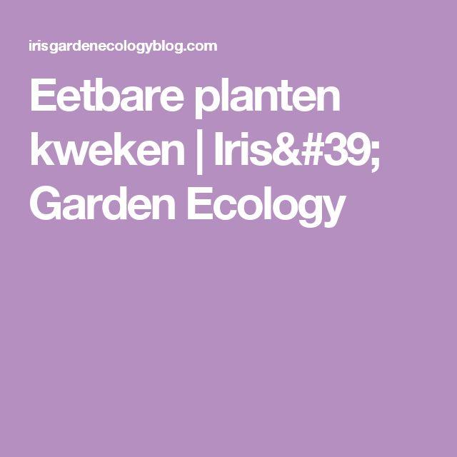 Eetbare planten kweken | Iris' Garden Ecology