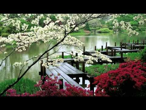 ▶ Relaxing Music - 3 HOURS | Zen Garden | - Sleep Music - Spa Music - Meditation - Therapy - YouTube