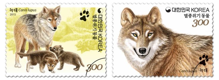COLLECTORZPEDIA: South Korea Stamps Endangered Wildlife - Wolf (Canis Lupus)