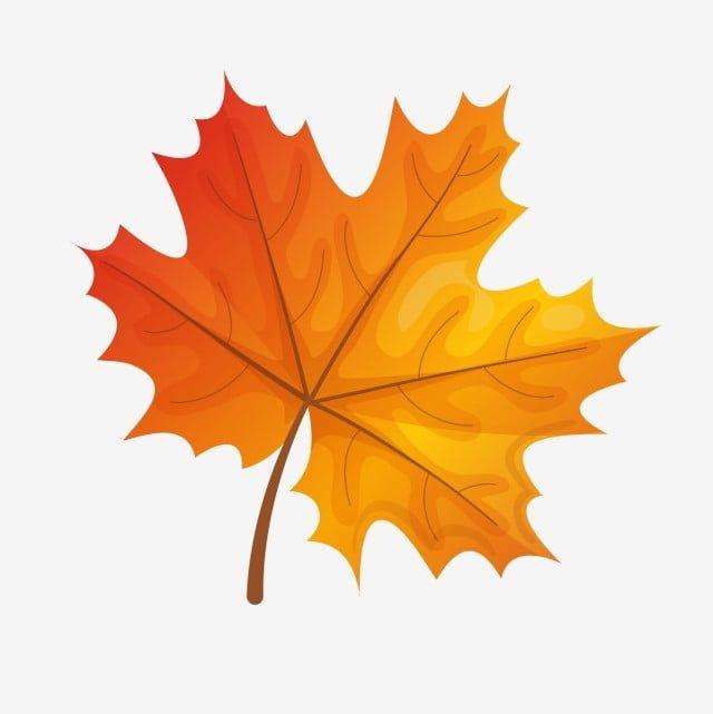 Fall Leaves Cartoon Drawing