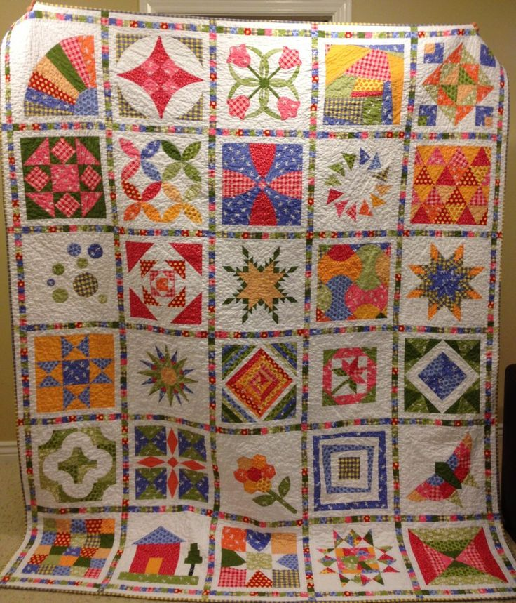 skill builder sampler quilt... What a good idea? Better than doing a whole quilt or having a bunch of orphan blocks