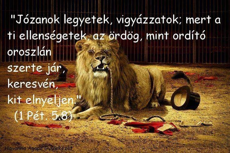 """""""Józanok legyetek, vigyázzatok, mert a ti ellenségetek az ördög, mont ordító oroszlán szerte jár, keresvén, kit elnyeljen."""" /1Péter 5:8,/"""