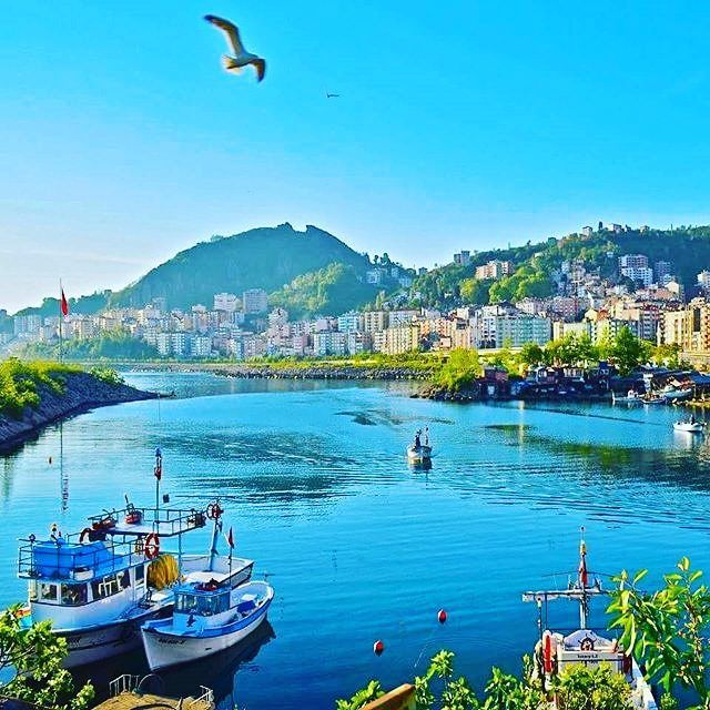 Giresun ⛵ Eastern Blacksea Region of Turkey ⚓ Östliche Schwarzmeerregion der Türkei #karadeniz #doğukaradeniz #giresun #travel #city #nature #ecotourism #mythological #colchis #thegoldenfleece #thecolchiandragon #amazonwarriors #tzaniti (Photographer: Hüseyin Karakılıç)