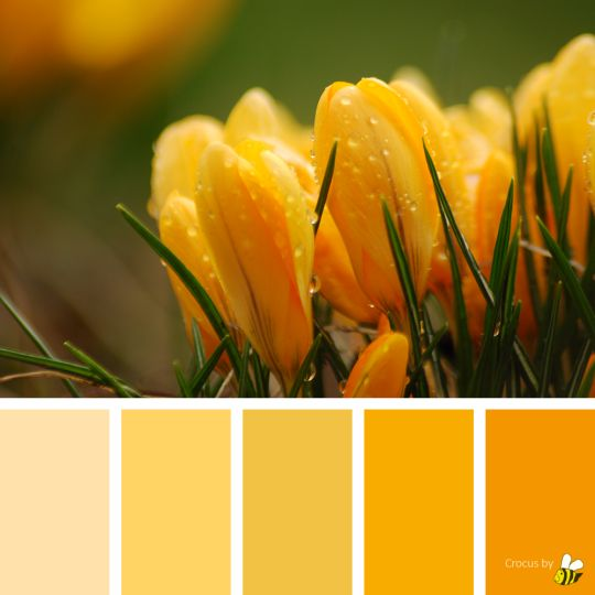 Crocus palette by BeeBox (ONLY FOR PERSONAL USE!)