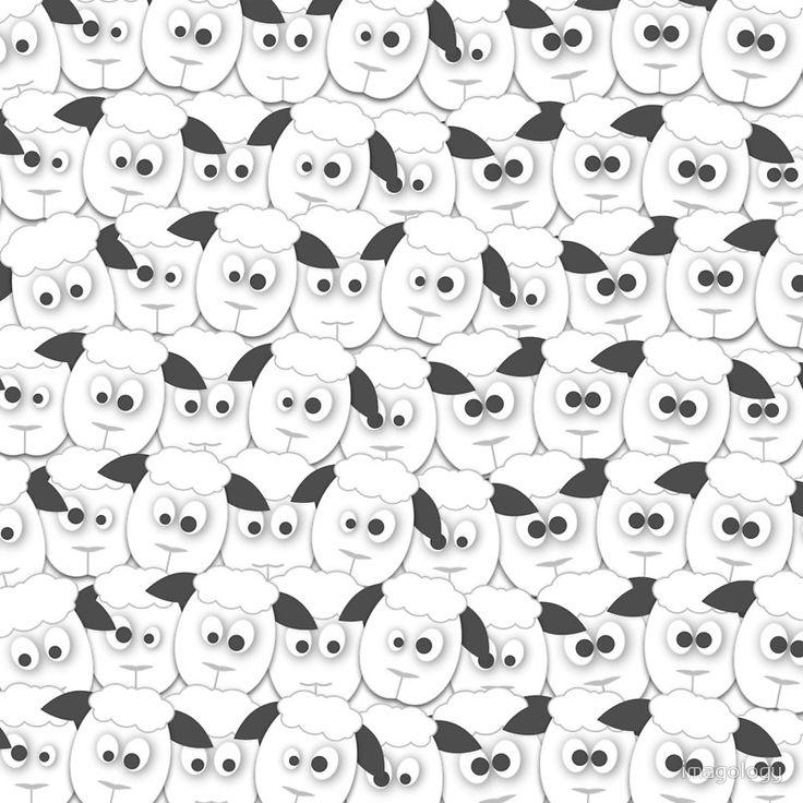 Crazy Herd of Sheep