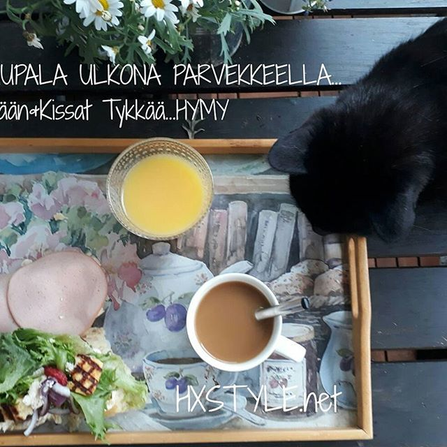KOTI&PUUTARHA, PARVEKE...Aamupala Ulkona, Elämäntapa, Tykkään&Nautin. Lemmikit viihtyvät. Sinä? HYMY #elämäntapa #tyyli #terveellinen #puutarha #parveke #ulkoilu #lemmikit #aamupala #blogilates #elämäntapablogi #blogi #kissat #kesä ⏰❤☺