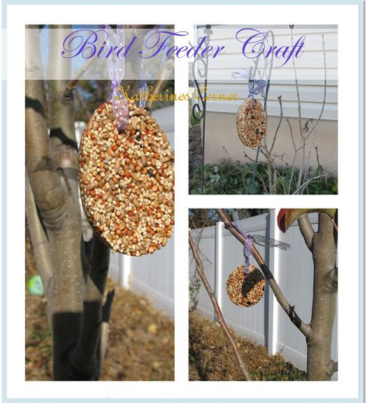 Bird Seed Craft - Katherines Corner