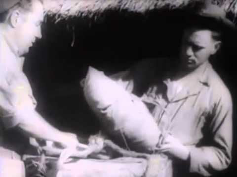US Troops in India Supplied by Air Drops 1943 OWI Newsreel World War II Burma Campaign