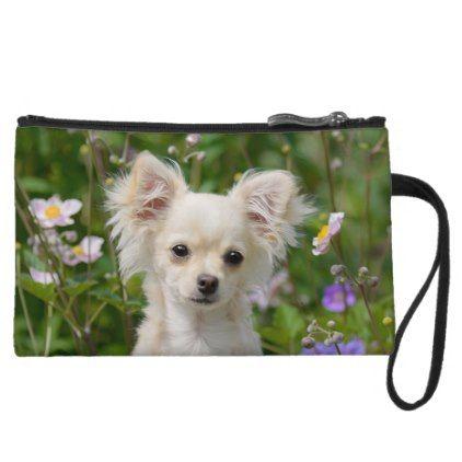 #Cute longhair cream Chihuahua Dog Puppy Pet Photo Wristlet - #chihuahua #puppy #dog #dogs #pet #pets #cute