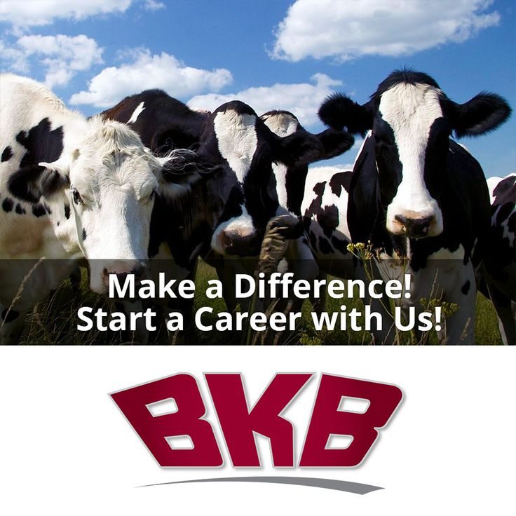 We are hiring in Standerton (Mpumalanga) - BKB: Auction Clerk http://jb.skillsmapafrica.com/Job/Index/78691 #jobs #careers