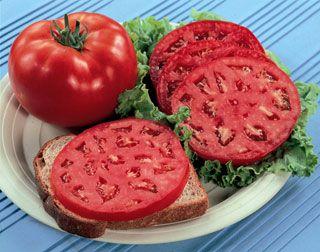 Good ol' t'mater sandwich!  Yum yum