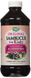Nature's Way Sambucus for Kids Bio-certified Elderberry - Cold And Cough Syrup for babies