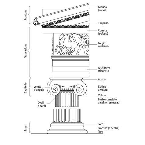 Schematizzazione con relativa nomenclatura dell'ordine ionico. L'ordine ionico si diffonde nel VI secolo a.C. nelle principali isole egee, nell'Attica e in Magna Grecia