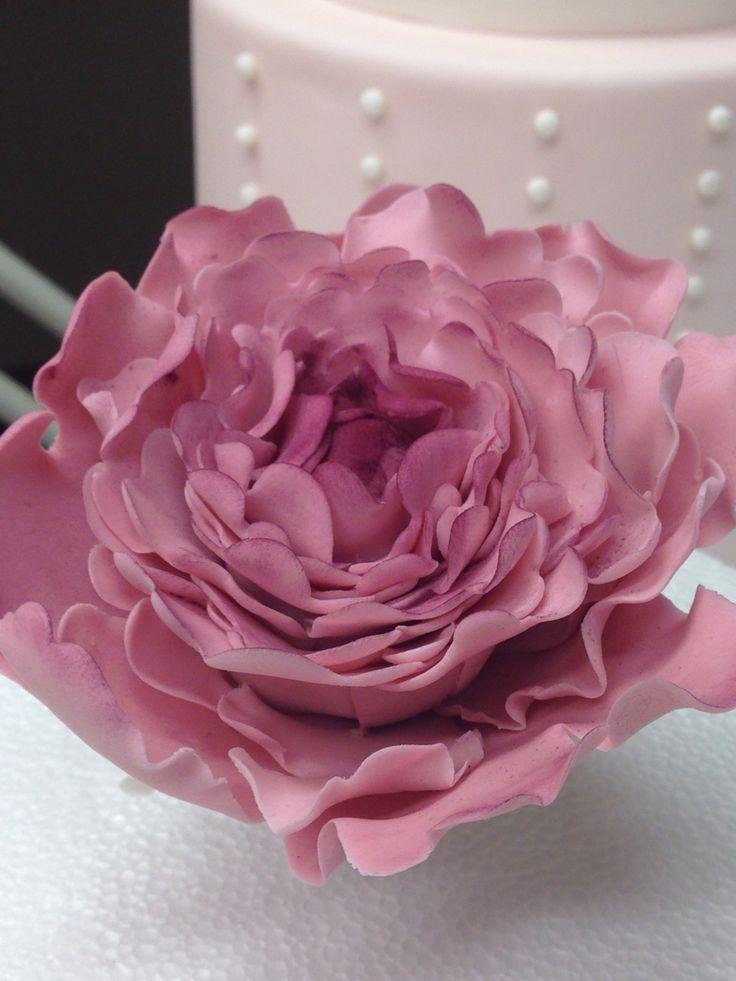 Ortensia pink sugar paste.
