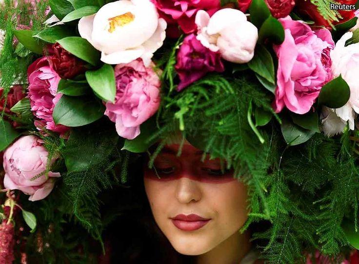 Королевская выставка цветов в Челси.