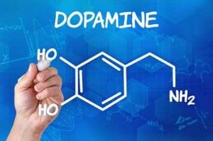 Dopamine, the Basal Ganglia and Chronic Fatigue Syndrome #II - Treatments | Recent evidence indicates that the basal ganglia and dopamine (DA) may be primary targets of inflammatory cytokines leading to cytokine-induced behavioral changes.