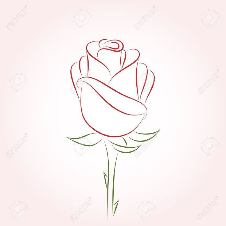 Single Line Drawing Flowers : Best ideas about rose outline on pinterest flower