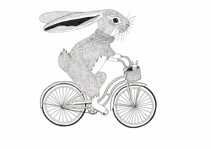 88 best images about vintage rabbit illustrations on