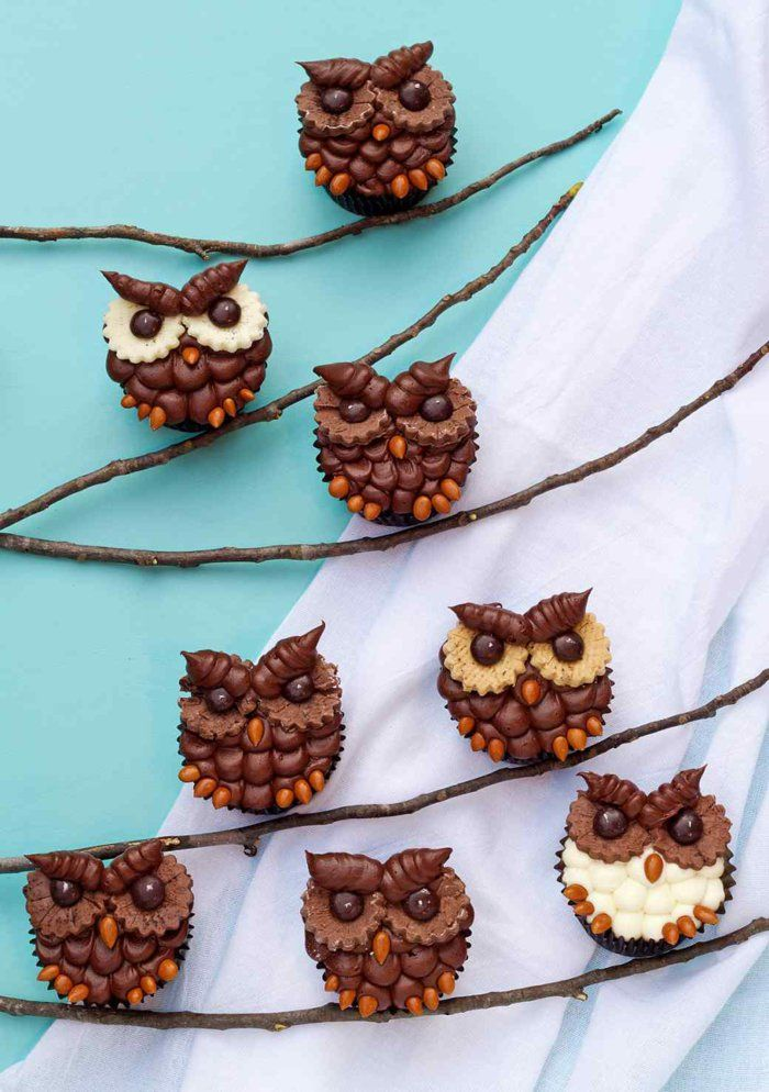 Eulen Cupcakes zubereiten Schoko-Törtchen backen