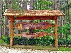 PARCO NAZIONALE DELLA SILA_0