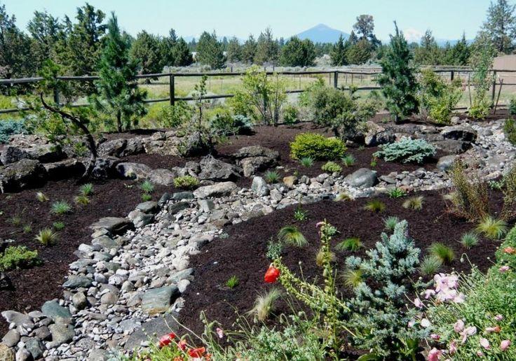 25 best ideas about high desert landscaping on pinterest for Desert landscaping ideas