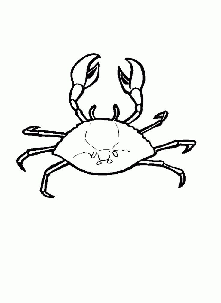 Toddler Free Printable Crab Coloring Pages For Kids Pdf Animal Coloring Pages Coloring Pages Coloring Pages For Kids