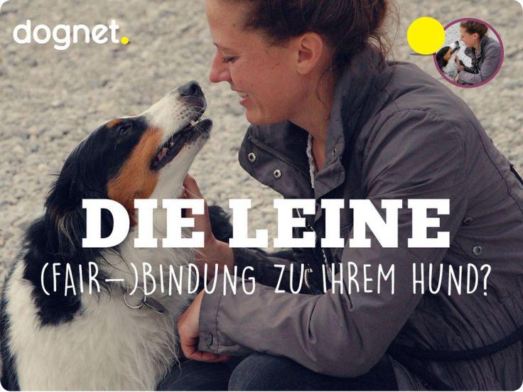 Die Leine als (Fair-)Bindung zu Ihrem Hund?