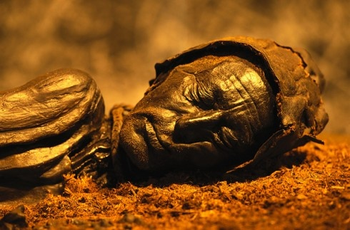 """""""Tollund Man"""" - Mummified corpse of a roughly 40 yr old man who lived approximately between 375-210 BC/Pre-Roman Iron Age. Found in 1950 buried in a peat bog on the Jutland Peninsula in Denmark. Due to the acidity of the peat bog along with the lack of oxygen his soft tissues were well preserved."""