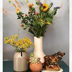 tolle Blumen Dekoration zur Herbstzeit für die Wohnung - Herbstdekoration für zu Hause auf dem Interior und Wohnblog MoKoWo aus Berlin