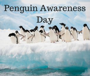 Celebrate Penguin Awareness Day on January 20 with these adorable crafts, snacks and goodies | Macaroni Kid