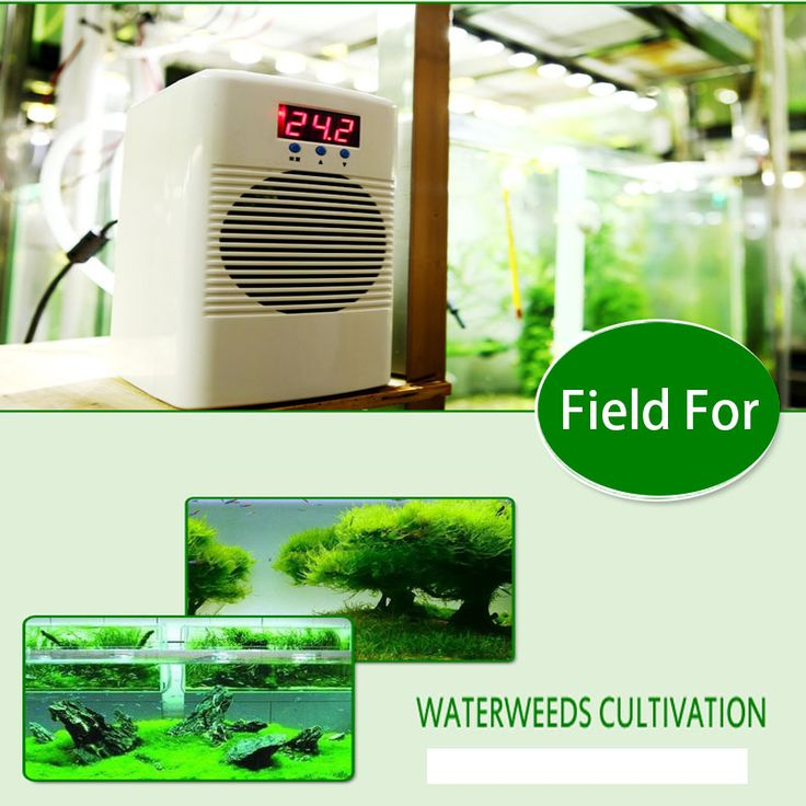 Aoling 100-A 100W Chiller Aquarium Fish Tank Mini Water Chiller Mini Water Cooler, 30 Liters Approval