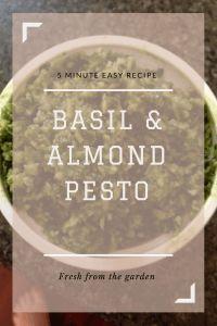 5 Minute Basil and Almond Pesto