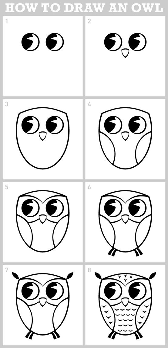 Owl directed draw drawings and paintings pinterest for Draw an owl in two steps
