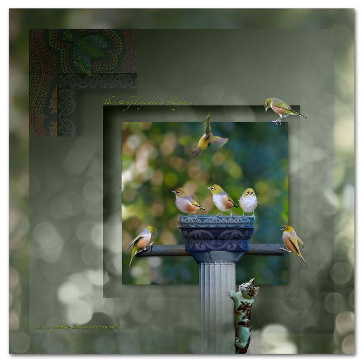 Siver-eye, birds in flight, aboriginal art, maori, cultural art, provision.  http://ianandersonfineart.com