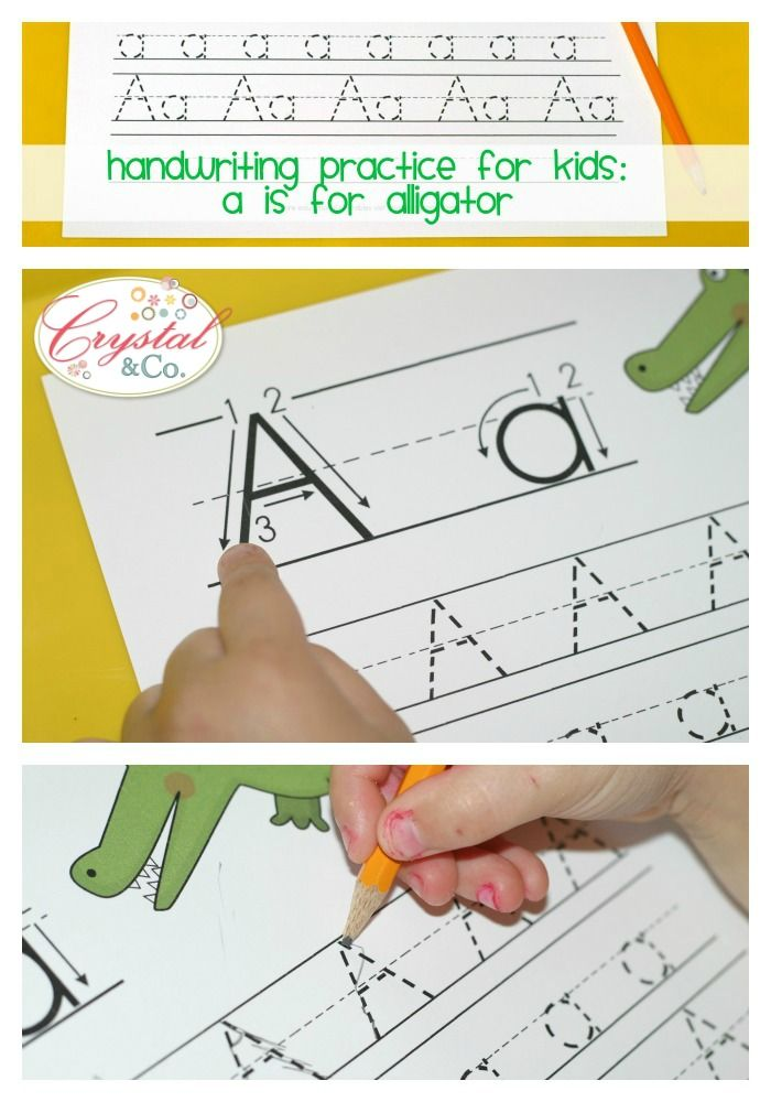 Practice Writing the Letter A A is for Alligator Handwriting Practice for Kids