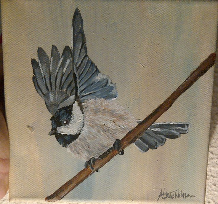 Small Bird 15 x15 cm Canvas Acrylic