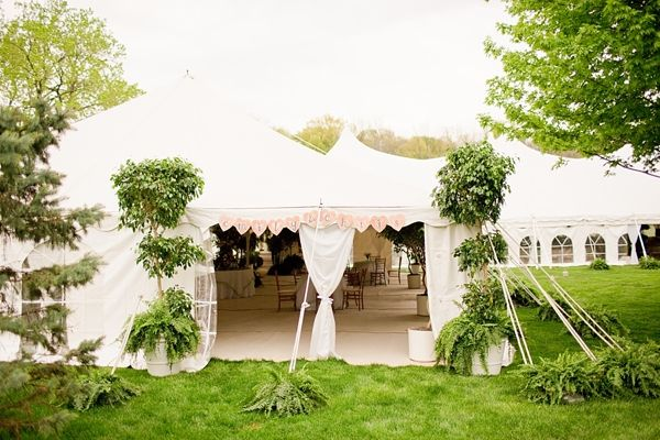 Backyard Wedding Venues : Tented Backyard Wedding Reception