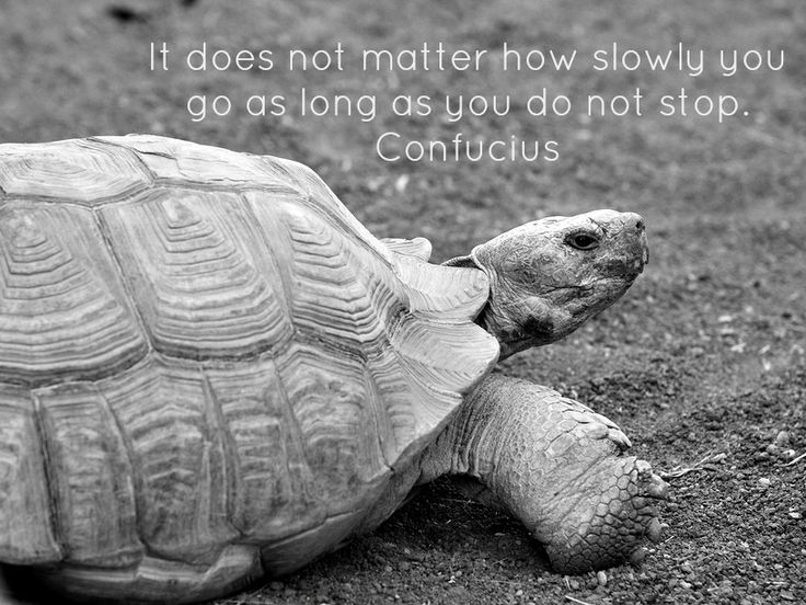 Even slow progress is progress. Keep going and you WILL get there.