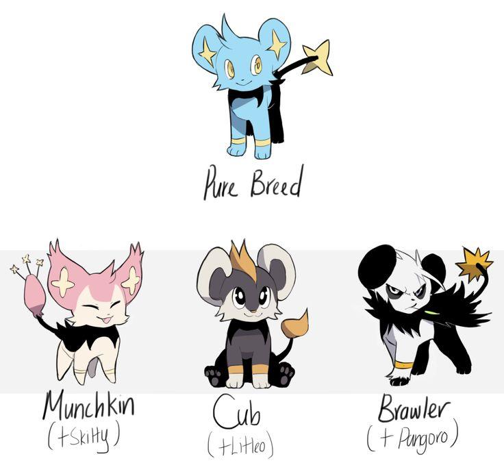 Kazie's Art Blog shinx breeds subspecies