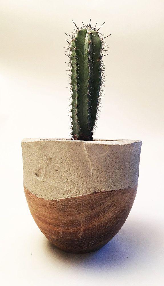 Best 25 cement planters ideas on pinterest diy cement for Wooden cactus planter