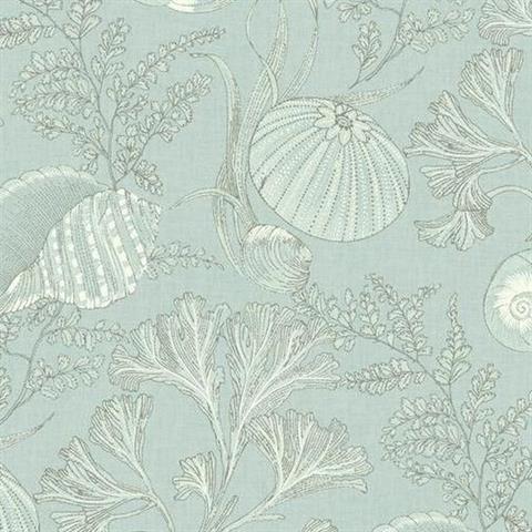 Aqua And Beige Seashells Toile Wallpaper Coral Wallpaper