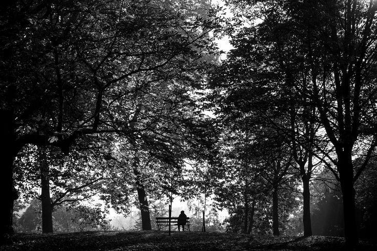 https://flic.kr/p/BvRMHd   Battersea Park   Battersea Park. London. UK www.stefanopadoan.com