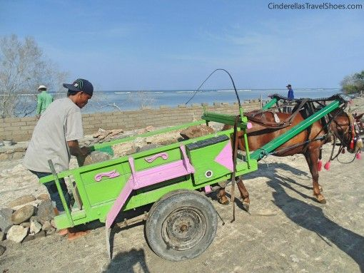 Horses help locals in Gili islands a lot