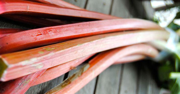 La rhubarbe est hyper polyvalente. Et pourtant on ne la voit presque exclusivement en version sucrée. Son côté acidulé fait qu'on lui ajoute trop souvent et inutilement une grande quantité de sucre…