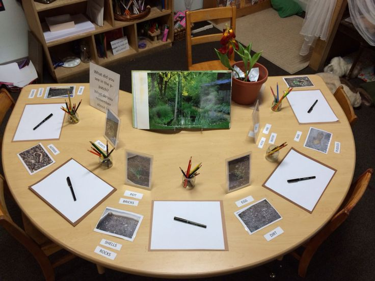 Ppatch observational drawing Reggio inspired