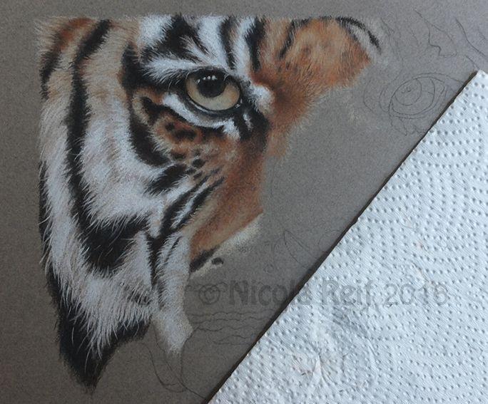 Tigers eye WIP.