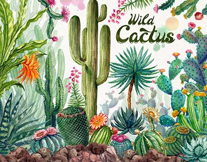 """Check out new work on my @Behance portfolio: """"Watercolor Cactuses"""" http://be.net/gallery/62010599/Watercolor-Cactuses"""