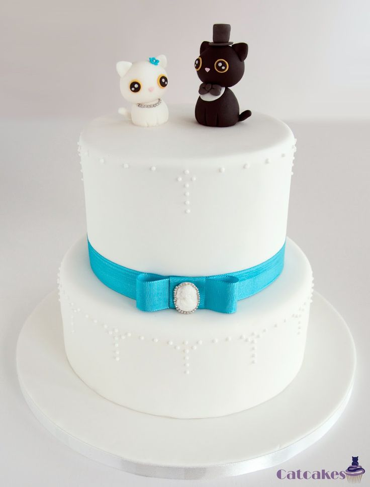 120 best cute cat cakes images on Pinterest Cat cakes Birthday